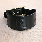 Boxed Bees Leather Buckle Collar (2 inch wide)