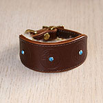Oriental Stones Leather Buckle Collar (small)