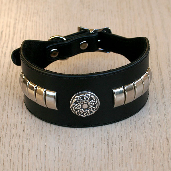 Celtic Metal buckle collar (2 inch wide)