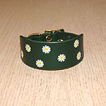 Buckle collar with daisies