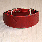 Dragonflies Leather Martingale Collar