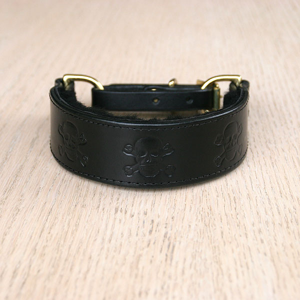 Swans and Blossoms Leather Martingale Collar (1.25 inch wide)