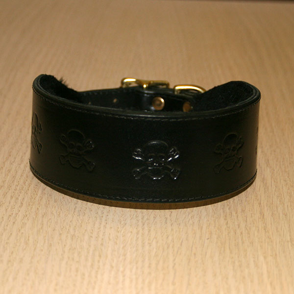 RTB Skulls Buckle Collar (2 inch wide)
